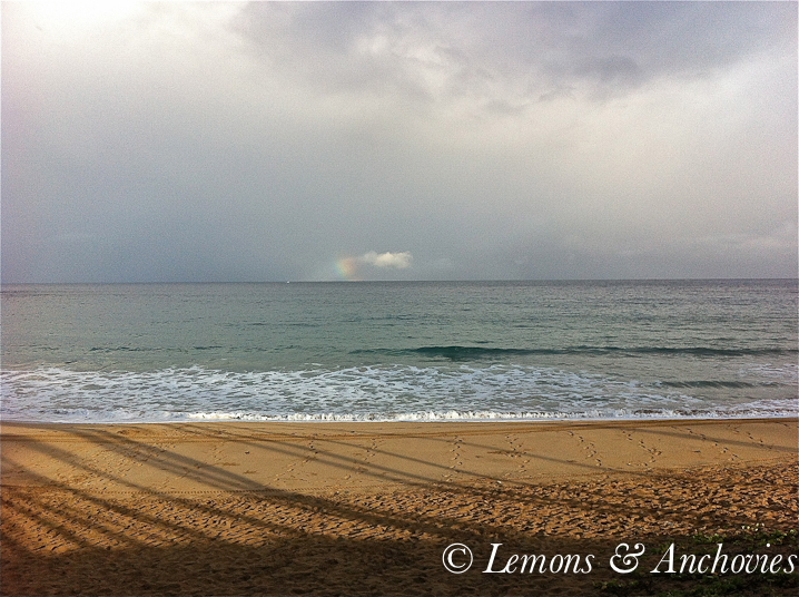 A hint of a rainbow and if you look closely you will also see a whale spout on its left. This is DT Fleming beach on our morning walk.