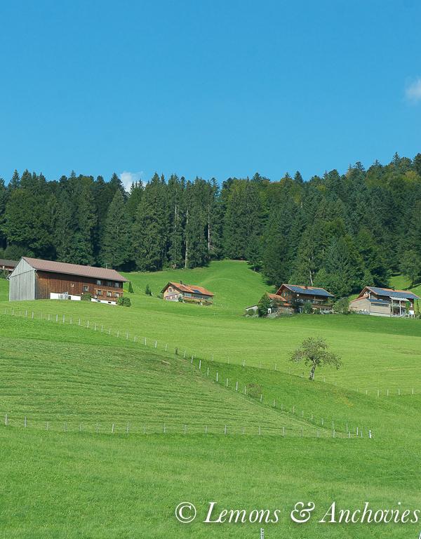 Europe 2012: Austria