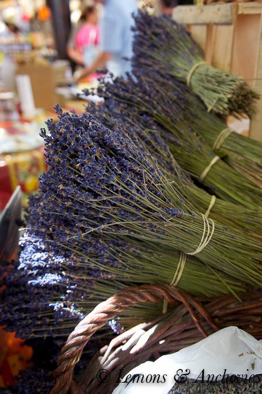 France 2013- Lavender
